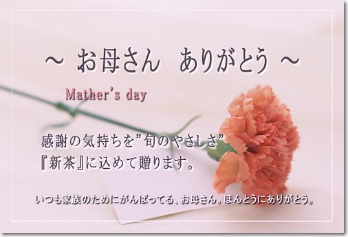 母の日 新茶 メッセージカード